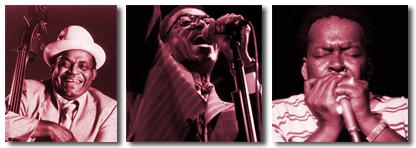 Willie Dixon | Syl Johnson | James Cotton